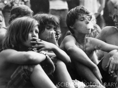 3 smoky