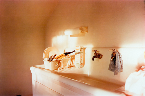 William Eggleston 12