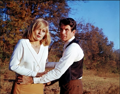 Bonnie and Clyde  (Warren Beatty, Faye Dunaway)