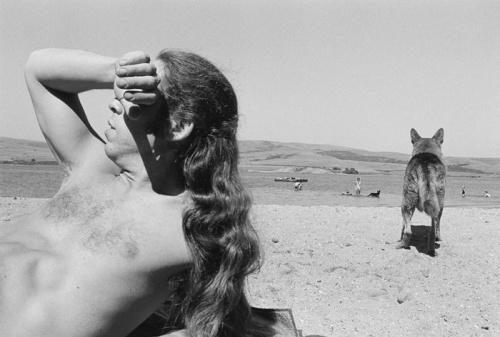 Henry Wessel, %22Bolinas, California%22 (1973)